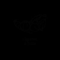 Legumes-600x600