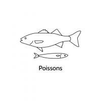 Poissons-720x720